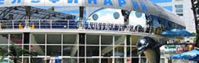 Kontakty z centrum terapii delfinami w Charków, zdjęcie