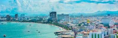 Kontakty z centrum terapii delfinami w Pattaya, zdjęcie
