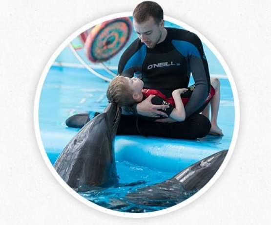 Funktionsweise der Delfintherapie - Fotos und Informationen bei therapynemo.com